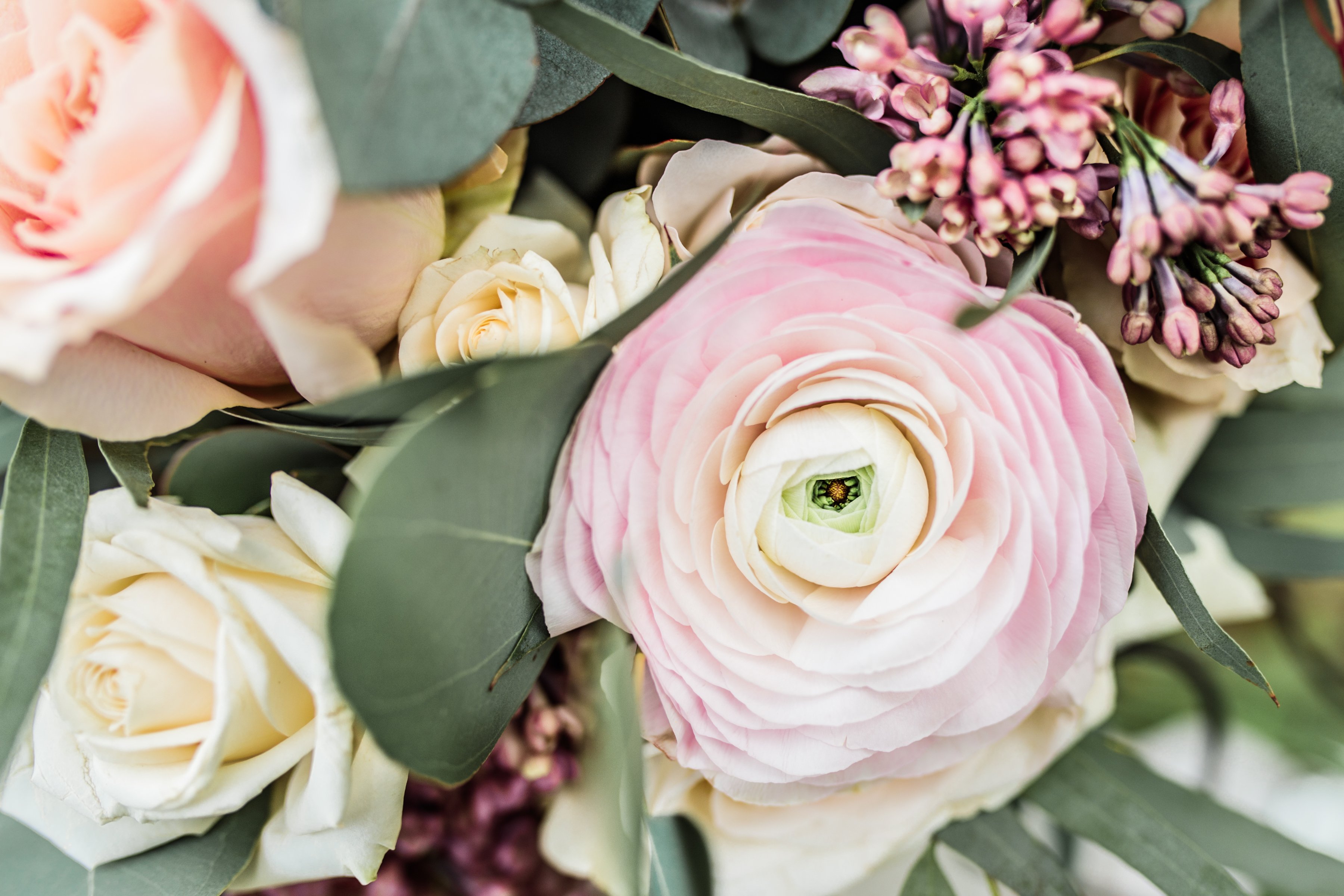 Seasonal wedding flowers spring/summer Daisylane Floral Design