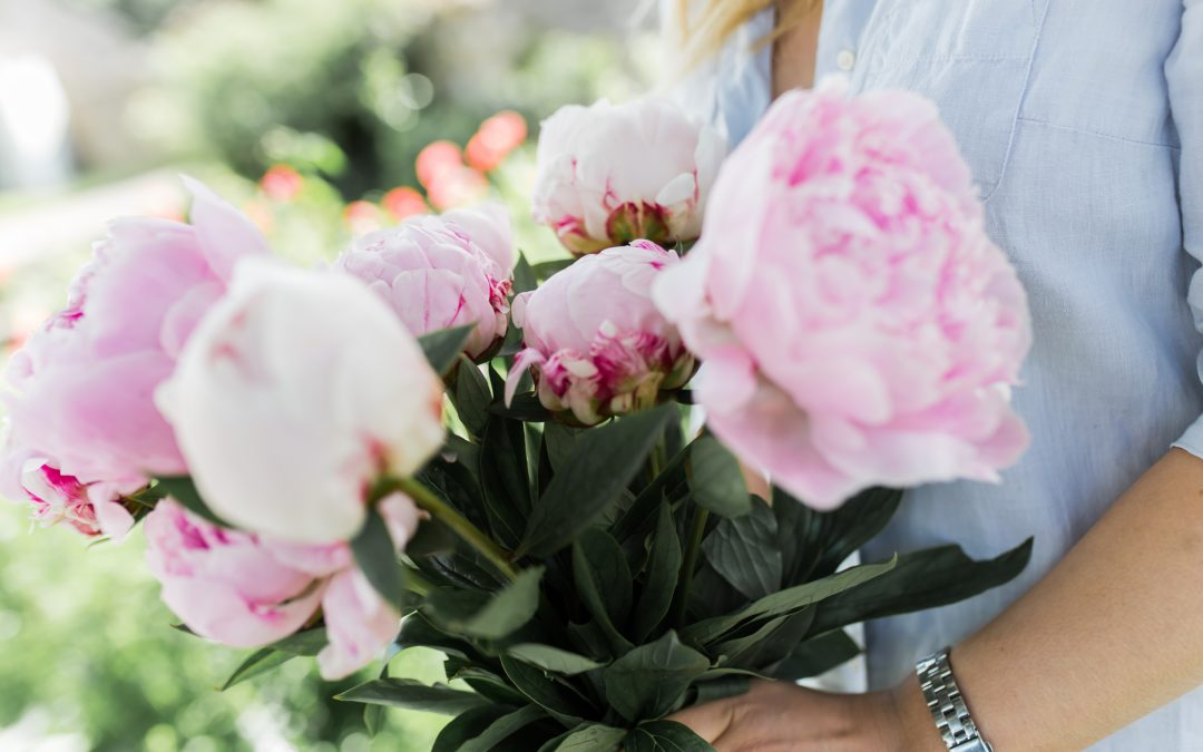 What to Do When Peonies Are Out of Season